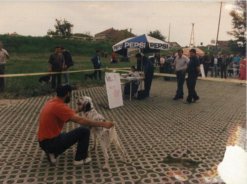 CAC 1990.