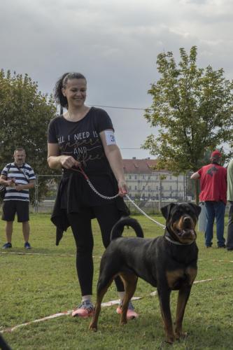 CACIB Osijek 15.09.2018.  8