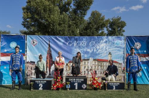 CACIB Osijek 15.09.2018.  Postolje 19