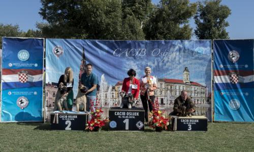 CACIB Osijek 15.09.2018.  Postolje 5