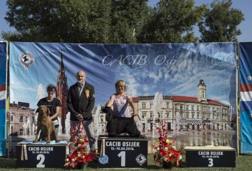 CACIB Osijek 15.09.2018.  Postolje 7