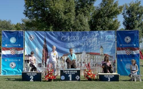 CACIB Osijek 16.09.2018. Postolje B 1
