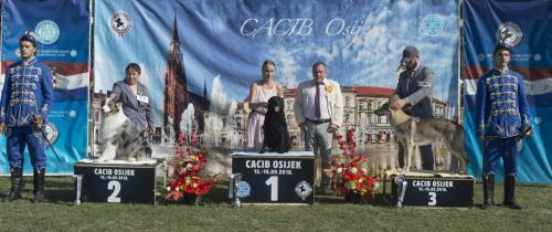 CACIB Osijek 16.09.2018. Postolje B 10